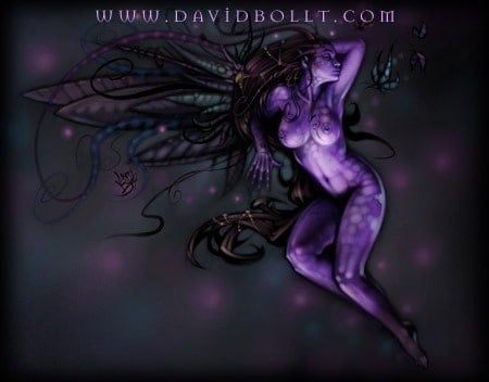 David Bollt-Purple Faerie